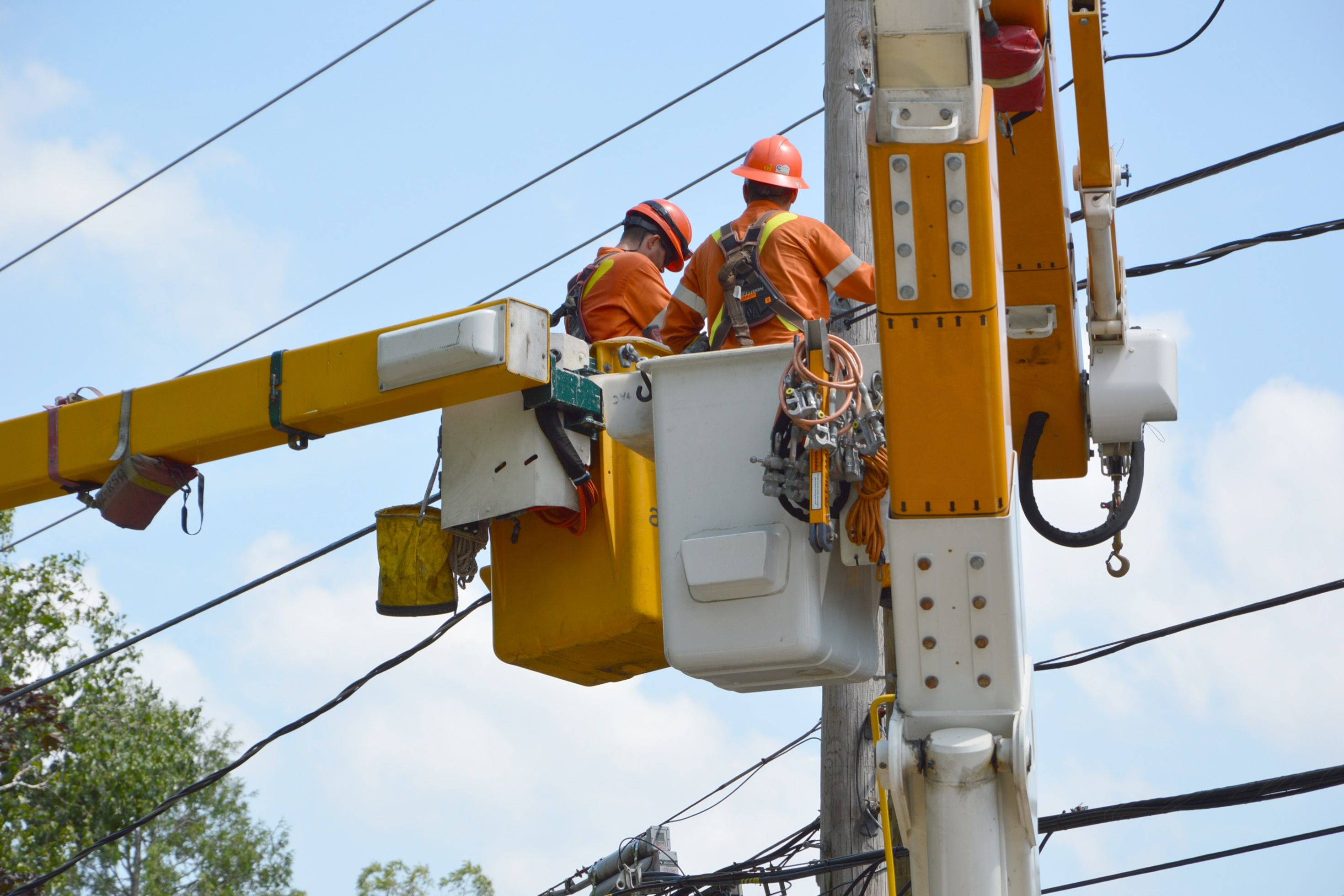 Picture of two lineworkers